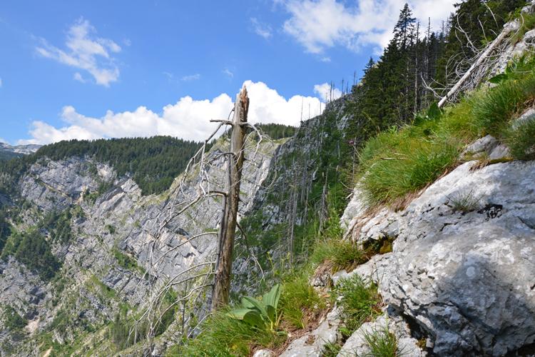 Pot čez Komarčo na Črno jezero