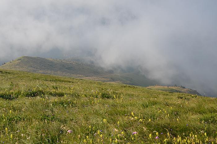 Megla nad Baško grapo
